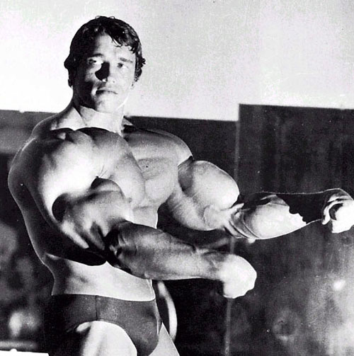 arnold schwarzenegger workout pictures. Arnold Schwarzenegger